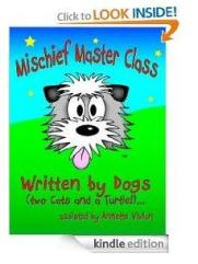 Mischief Master Class