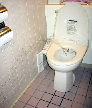 Toilet with water underneath