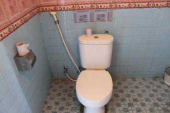 Toilet with water hose