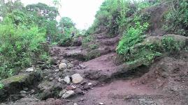 A short stair to climb