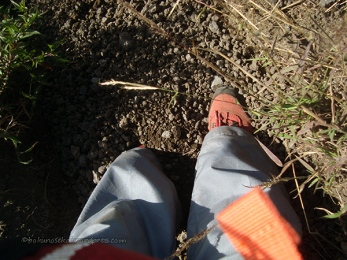 The trek was full of small rocks