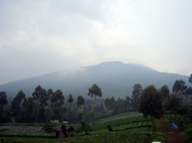 Mount slamet from afar