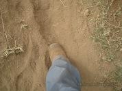 Turned dusty
